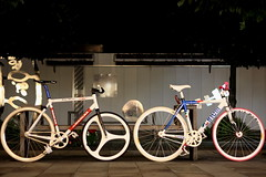 EDDY MERCKXCHINELLI (sgym_) Tags: fixedgear yokohama eddy pist merckx chinelli
