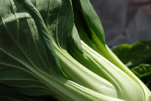 Bok Choy from Market