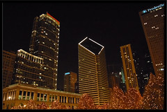 Skyline seen from Millenium Park (wishymom (Stephanie Wallace Photography)) Tags: christmas city holiday chicago skyline night lights anawesomeshot photofaceoffwinner coolestphotographers thechallengegame challengegamewinner pfogold