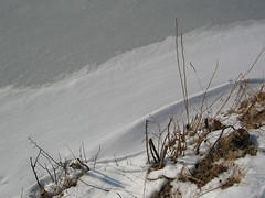IMG_0098 (rlg) Tags: 2005 snow december sunday 11 200512 1211 1112 dec11 fpr 11122005 12112005 20051211 canons80