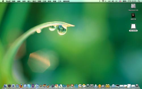 My Leopard Desktop