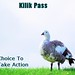 Kilik Pass - Choice To Take Action