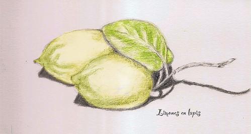 limones en lapis copy