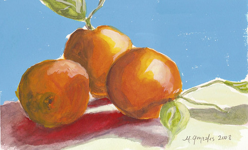 Blood Oranges in Gouache