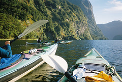 Kayaking, Doubtful Sound, NZ