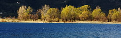Dervio lago di como (Michele Testini) Tags: como lago di dervi