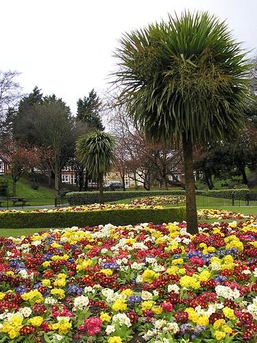 Gardens in full-bloom
