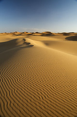 Dunes & Photo Adict (elosoenpersona) Tags: africa sahara sunrise sand desert dunes arena textures amanecer morocco desierto marruecos soe texturas dunas erg merzouga blueribbonwinner chebbi supershot ergg colorphotoaward aplusphoto superbmasterpiece diamondclassphotographer flickrdiamond elosoenpersona