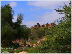 Lasgel. (Yusuf Dahir's Somaliland Photos) Tags: somaliland lasgel