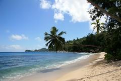 Seychellen 2008  Beach