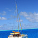Bora Bora ~ Catamaran on Blue Water