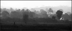 Dive Aagar - Konkan (rahulavachat) Tags: morning white black fog lumix wide panasonic maharashtra panaromic konkan fz50 balckwhite diveagar