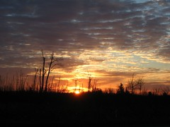 sunrise on Hwy 7