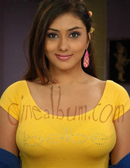 Namitha yellow (Amazing Album !) Tags: cute actress beautifull kollywood tollywood namitha mollywood tamilactress southindianactress