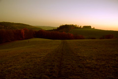Loneliness (dellafels) Tags: autumn dellafelspic mywinners goldenphotographer flickrelite thegoldenmermaid