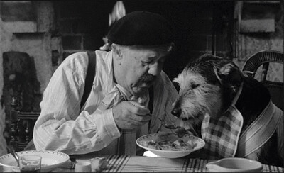 Image result for old man and dog