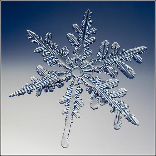 Snowflake_080017