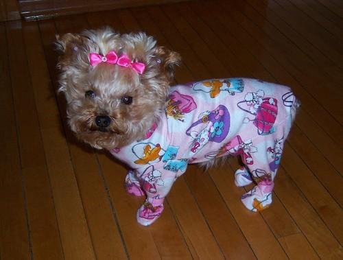 Dog Footie Pajamas