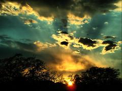 Sunset (TheSki) Tags: trees sunset color art nature beautiful clouds contrast digital america austin photography design cool exposure texas dynamic angle artistic divine photograph american stunning americana rays popular technique beams hdr hdri atx artisitic bestshot flickrhits theski davidgaiewski austinartbeautiful
