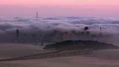 Fog Bath (A Sutanto) Tags: sf sanfrancisco california ca city bridge usa fog skyline america bay downtown view dusk scenic baybridge bayarea sfbay grizzlypeak