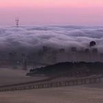 Fog Bath