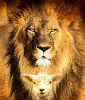 Jesus leão da tribo de  juda