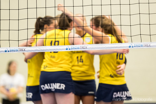 "3. Heimspiel vs. Volleyball-Team Hamburg • <a style=""font-size:0.8em;"" href=""http://www.flickr.com/photos/88608964@N07/32003260473/"" target=""_blank"">View on Flickr</a>"