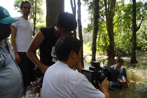 Shooting a scene in the mangrove forest