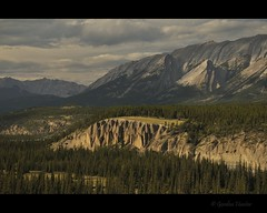 (Gordon Hunter) Tags: trees light canada mountains nature landscape rockies evening jasper rocky falls gordon alberta banff hunter siffleur