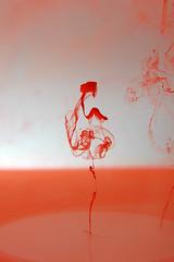 Drop 1 (árticotropical) Tags: abstract hot macro art nature water closeup ink flow movement stream paint chaos transformation streak artistic god random style drop dilute drip fluid gravity flux bubble particle droplet bead splash alter bit dribble speck spatter trickle driblet