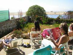 algarrobo (-      LORETO ::.) Tags: de casa fin semana terraza algarrobo chiquillas