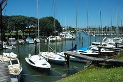 marina boats auckland milford