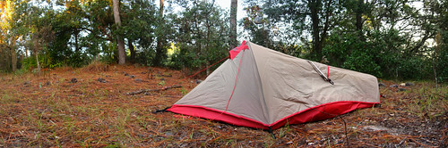 Camping in Homosassa Wildlife Management Area, Florida, USA