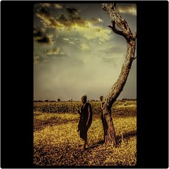 Secheresse/Drought (Osvaldo_Zoom) Tags: africa sky man rain waiting deadtree drought mali whois sahel themoulinrouge blueribbonwinner littlestories tonemapped flickrsbest mywinners defidefiouiner betterthangood picswithsoul
