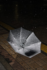 Discarded Umbrella (by sleepytako)
