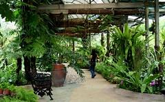 Taman Orkid Kuala Lumpur