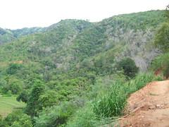 Beautiful hills-1 (MASTER PT) Tags: mountans badulla hillsmountains at