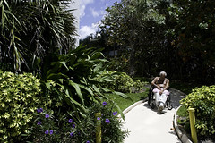 man in wheelchair_0095-Edit_1 web