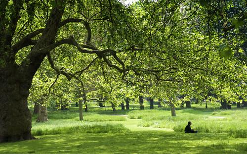 Green Park 04