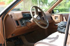 IMG_2940.JPG (stephen.butler) Tags: car 1989 steeringwheel chevycelebrity
