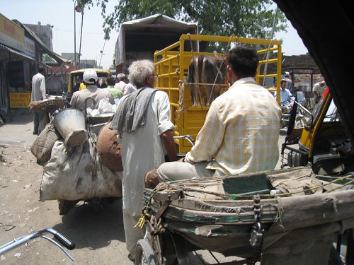Going nowhere fast on my overpriced bicycle rickshaw