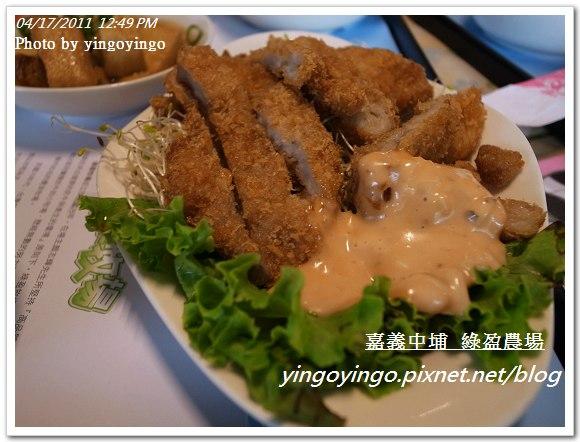 嘉義中埔_綠盈農場20110417_R0019045