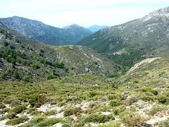 Vallée de la Haute Tavulella avec en bas la piste de Cristinacce