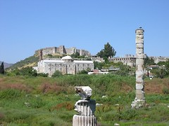 The site of the Temple of Artemis at Ephesus in Turkey. (Wonders _) Tags: ancienthistory ancientcivilization archeology greekmythology ancientgreece greekgods templeofartemis ancientworld sevenwondersoftheworld ephesusturkey godstemple pentelicmarble classicalantiquity templeofdiana greekculture ancientgreeks greekhistory ancientwonders classicalgreece helenismo thesevenwondersoftheancientworld grciaantiga grciaclssica hellenicperiod hellenisticcivilization sevenwondersancientworld
