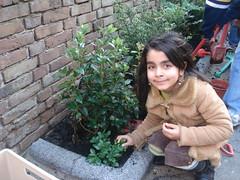Öze bij haar plant