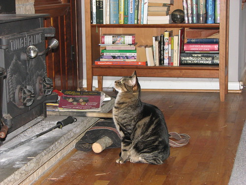 Simon & the Fireplace