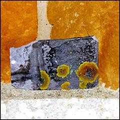 Church wall minimal (tina negus) Tags: abstract church stone leicestershire minimal lichen slate dmv welby meltonmowbray 10faves diamondclassphotographer flickrdiamond abstractartaward