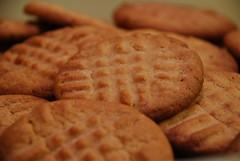 Peanut Butter Cookies (jillmotts) Tags: cookies dessert goodeats peanutbutter bakedgoods peanutbuttercookies peanutbuttercookie jillmotts