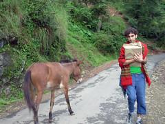 on the way to mcleod ganj (t h e Girl) Tags: india ganj mcleod dharamkot