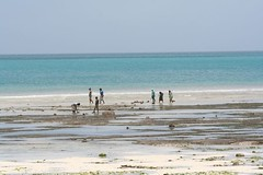 IMG_9161 Zanzibar the sea is gone (majoorpl) Tags: africa afryka